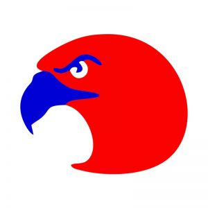 4th of July Eagle Face Vector Art