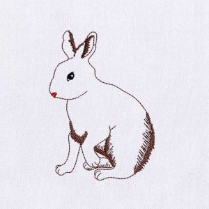 Rabbit Embroidery Designs