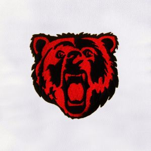 Bear Embroidery Designs