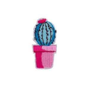 Blue Barrel Cactus Patch
