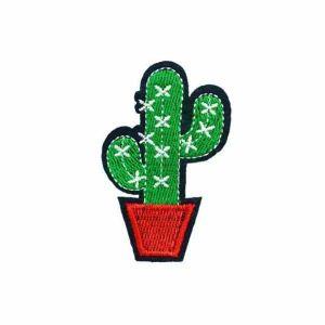 Saguaro Cactus Patch