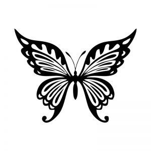 Butterfly Stencil Art